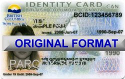 FAKE BCID CARDS FAKE ID BC CANADA FAKE BCID CARD
