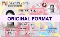MARYLAND FAKE DRVIERS LICENSE, SCANNABLE FAKE MARYLAND DRIVERS LICENSE WITH HOLOGRAMS