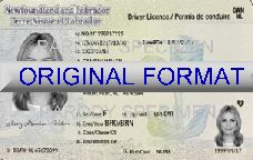 Newfoundland Fake Driver License Format ID Cards Designs Templates Novelty Software Card Hologram newfoundland
